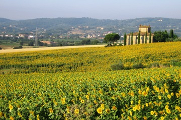 Visit off-the-beaten-path Tuscany with me: Valdichiana