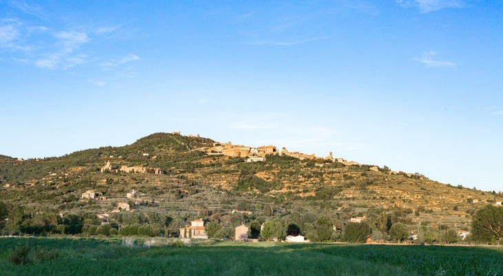 Visit Cortona with a local tour guide