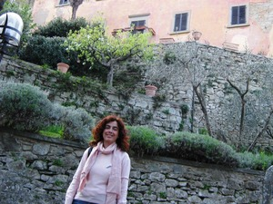 Private guided tour of Cortona to Bramasole villa, Under The Tuscan Sun