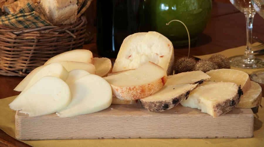 Guided tour: Arezzo and Pecorino cheese