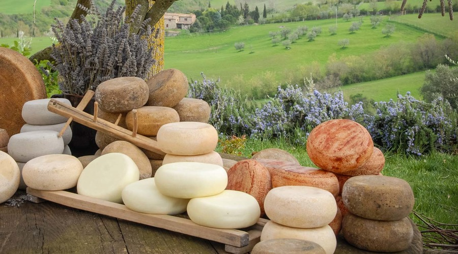 Guided tour: Pienza and Pecorino cheese