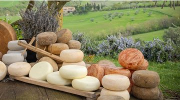 Food Wine Tours in Tuscany